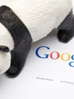 Pandagoogle